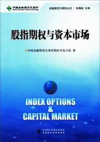 股指期权与资本市场