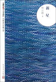 中国当代长篇小说:新星