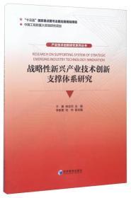 产业技术创新研究系列丛书:战略性新兴产业技术创新支撑体系研究