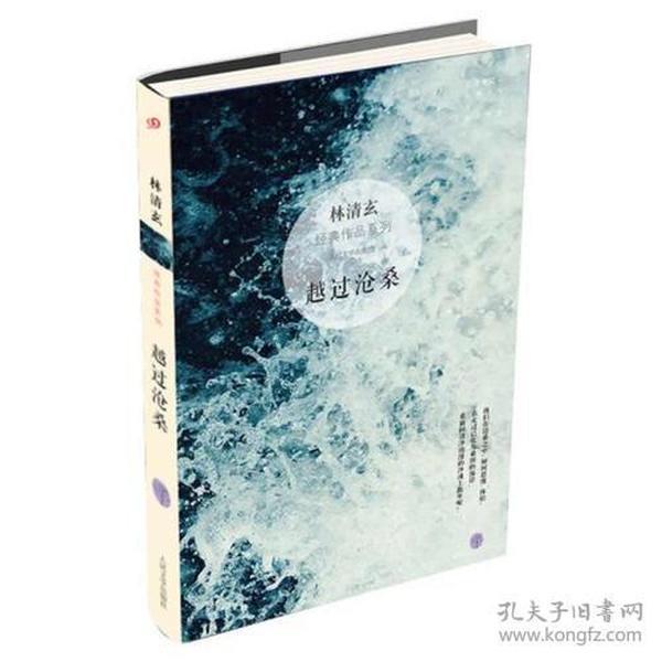 越过沧桑:林清玄经典作品系列