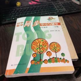 初中数学同步学习与辅导:9年级第1、2学期(与二期课改教材配套)