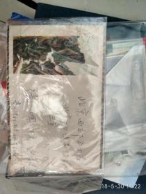 1960年 广西双语邮戳 美术实寄封  普八 邮票