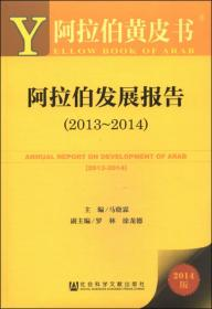 阿拉伯黄皮书:阿拉伯发展报告(2013~2014 2014版)
