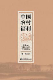 中国农村福利