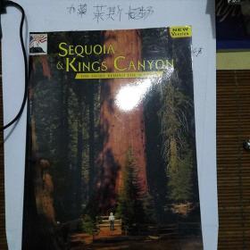红杉与国王峡谷风景背后的故事