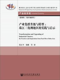 产业集群升级与转型:珠江三角洲地区的实践与启示