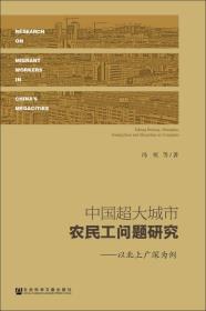 中国超大城市农民工问题研究