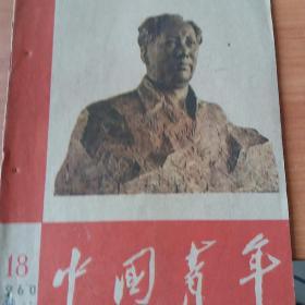 中国青年 1960 18(有破损)