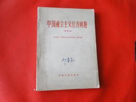 中国社会主义经济问题(试用本)