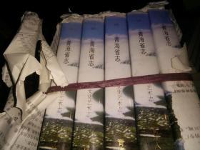 青海省志 -文化艺术志