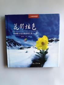 花影炫色:中国国家地理——中国野生花卉精彩图片选(第一卷)一版一印,铜板彩印,品佳