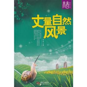 丈量自然风景--青春阅读丛书