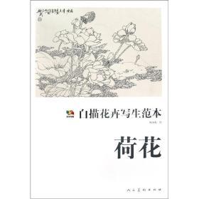 荷花-白描花卉写生范本