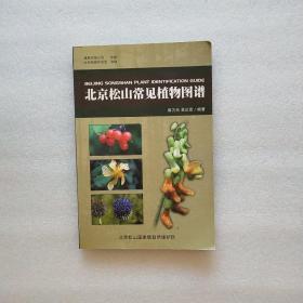 北京松山常见植物图谱