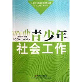 社会工作精选课程系列教材:青少年社会工作