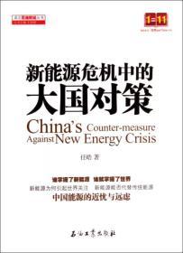 读点石油财经丛书:新能源危机中的大国对策
