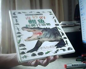 奇妙的鳄鱼和爬行动物