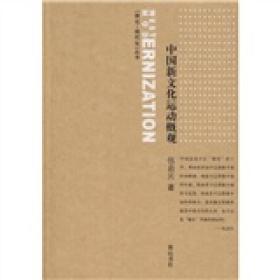 西化·现代化丛书:中国新文化运动概观