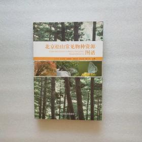 北京松山常见物种资源图谱