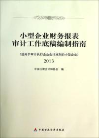 小型企业财务报表审计工作底稿编制指南2013