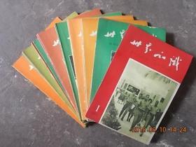 世界知识 1965年第1~24期(24本合售)品相极佳