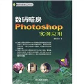 数码摄影工作坊:数码暗房Photoshop实例应用