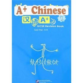 汉语A+(上)