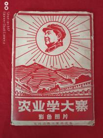 农业学大寨彩色图片1968年