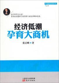 名家如是说寒冬丛书:经济低潮孕育大商机