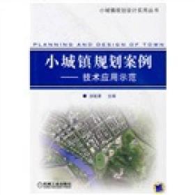 小城镇规划案例:技术应用示范