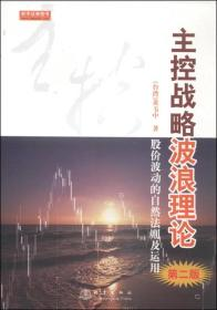 主控战略波浪理论(第2版)