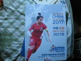 哥德杯中国世界青少年足球赛