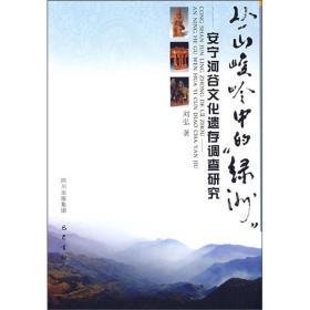 丛山峻林中的绿洲:安宁河谷文化遗存调查研究