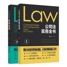 公司法实务全书-(全2册)