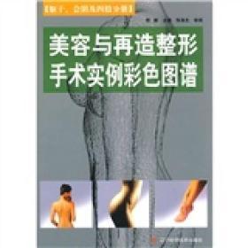 美容与再造整形手术实例彩色图谱:躯干、会阴及四肢分册