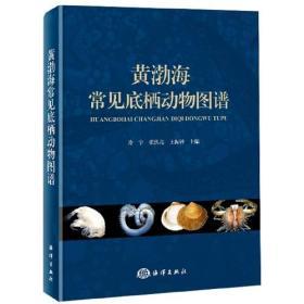 黄渤海常见底栖动物图谱