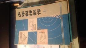 少年科技制作 (1)