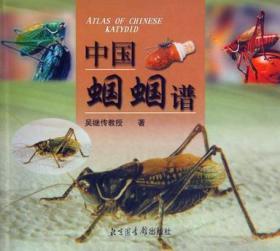 中国蝈蝈谱