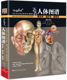 当天发货,秒回复咨询 TIO 正版 人体图谱:解剖学·组织学·病理学(第2版)/[西] Jordi Vigue/9787534939327/河南科学技术出版社 新华书店畅销书籍 如图片不符的请以标题和isbn为准。