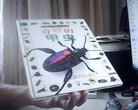 奇妙的甲虫