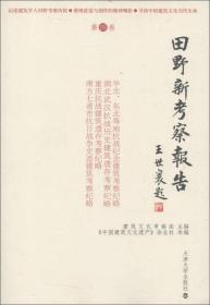 田野新考察报告:第四卷