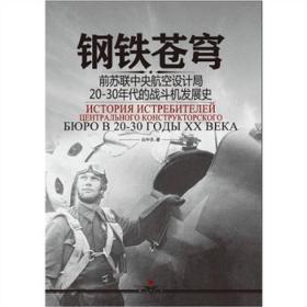 钢铁苍穹:前苏联中央航空设计局20-30年代战斗机发展史