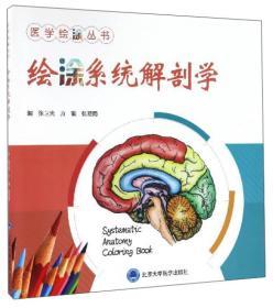 绘涂系统解剖学
