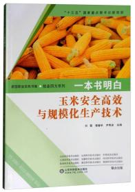 一本书明白:玉米安全高效与规模化生产技术