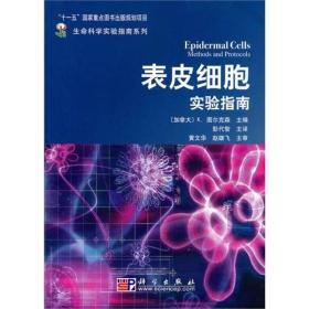 表皮细胞实验指南