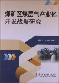 煤矿区煤层气产业化开发战略研究