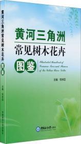 黄河三角洲常见树木花卉图鉴