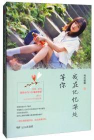 中国当代长篇小说:我在记忆深处等你