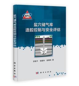 正版】盐穴储气库造腔控制与安全评估