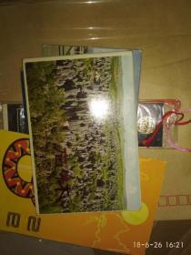 石林 明信片 1979 12全